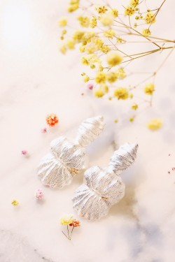 Seashell Creation Earrings Silver